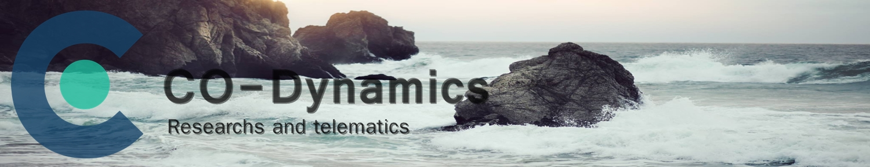 CO-Dynamics
